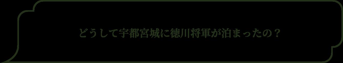どうして宇都宮城に徳川将軍が泊まったの?